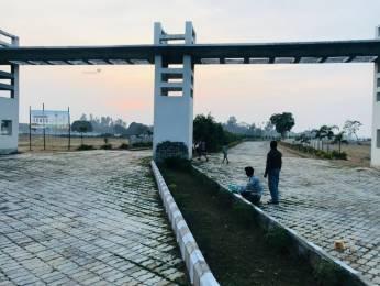 1000 sqft, Plot in Shine Paradise Garden Itaunja, Lucknow at Rs. 8.0000 Lacs