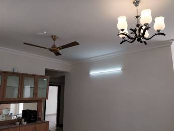 1943 sqft, 3 bhk Apartment in Puravankara Projects Limited Purva Windermere Pallikaranai, Chennai at Rs. 23000