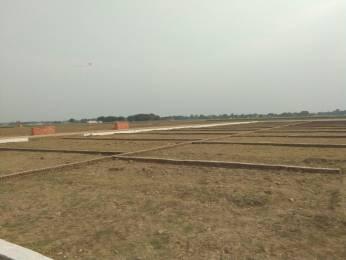 1360 sqft, Plot in Builder Project Sarnath, Varanasi at Rs. 19.0000 Lacs