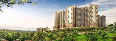 600 sqft, 1 bhk Apartment in Paranjape Builders Forest Trails Bavdhan, Pune at Rs. 33.0000 Lacs