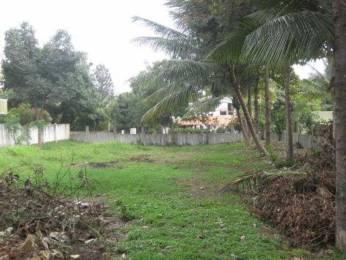 3100 sqft, Plot in Ferns City Doddanekundi, Bangalore at Rs. 3.0000 Cr