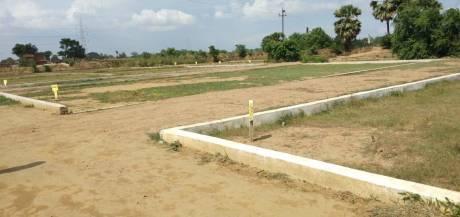 1000 sqft, Plot in Builder Project Parao Ramnagar Road, Varanasi at Rs. 12.1000 Lacs