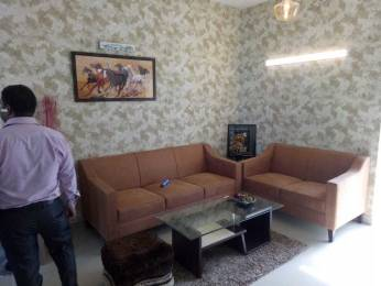 647 sqft, 2 bhk Apartment in Terra Lavinium Sector 75, Faridabad at Rs. 20.4300 Lacs