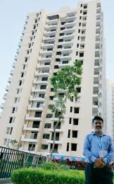 2000 sqft, 3 bhk Apartment in Assotech Windsor Court Phase I and II Sector 78, Noida at Rs. 96.0000 Lacs