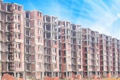 610 sqft, 1 bhk Apartment in Builder Project Zirakpur Road, Chandigarh at Rs. 22.0000 Lacs