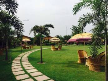 9072 sqft, Plot in DPL Group Flora Orchid Farms Sector 93, Noida at Rs. 50.0000 Lacs