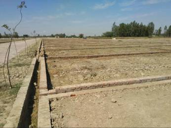 1000 sqft, Plot in Builder SHINE GROUP TOWNSHIP Nagram Nilmatha Road, Lucknow at Rs. 5.0000 Lacs