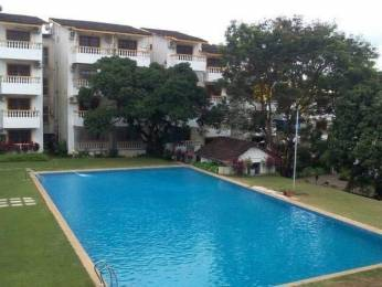 800 sqft, 1 bhk Apartment in Builder Project Candolim, Goa at Rs. 18000