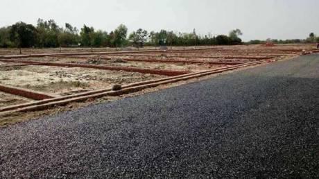 1000 sqft, Plot in Builder tashi Naubatpur Nisharpura Road, Patna at Rs. 6.5000 Lacs