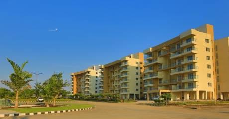 1758 sqft, 3 bhk Apartment in Treasure Group and Kalani Group Town and Treasure Vihar Bijalpur, Indore at Rs. 53.3700 Lacs