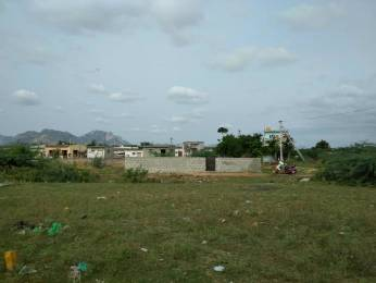 2178 sqft, Plot in Builder Swarnamukhi Layout Tirupati Rayalacheruvu Road, Tirupati at Rs. 53.2400 Lacs