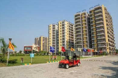 1706 sqft, 3 bhk Apartment in Builder Maxxon Trishla City Zirakpur Zirakpur, Mohali at Rs. 54.0000 Lacs