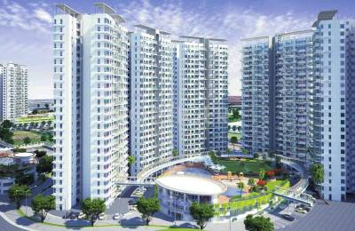 811 sqft, 2 bhk Apartment in Pharande Puneville Phase I Tathawade, Pune at Rs. 52.1030 Lacs