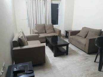 1775 sqft, 3 bhk Apartment in Builder Project Butler Colony, Lucknow at Rs. 50000