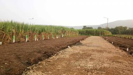 1200 sqft, Plot in Builder Bloom Aura Hinjewadi, Pune at Rs. 7.2000 Lacs