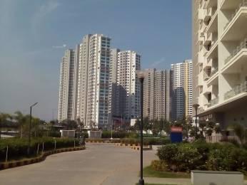 614 sqft, 1 bhk Apartment in Paranjape Blue Ridge Hinjewadi, Pune at Rs. 40.0000 Lacs