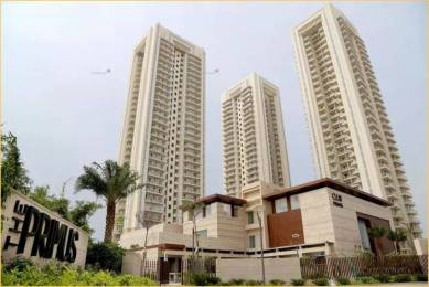 1818 sqft, 3 bhk Apartment in DLF The Primus Sector 82A, Gurgaon at Rs. 35000