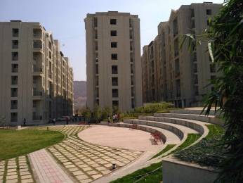 544 sqft, 2 bhk Apartment in Xrbia Xrbia Hinjewadi, Pune at Rs. 25.0000 Lacs