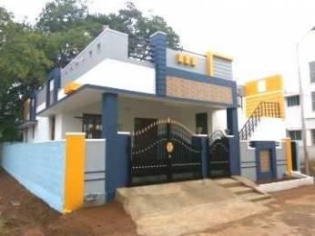 800 sqft, 2 bhk IndependentHouse in Builder sri sai sakthi nagar Walajabad, Chennai at Rs. 15.4000 Lacs