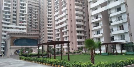 1095 sqft, 2 bhk Apartment in Builder Wallrock Aishwaryam Gaur City Road, Noida at Rs. 38.0000 Lacs