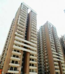1620 sqft, 3 bhk Apartment in Wall Rock Aishwaryam Sector 16C Noida Extension, Greater Noida at Rs. 54.1800 Lacs