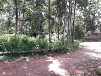 6534 sqft, Plot in Builder Project Nemom, Trivandrum at Rs. 97.5000 Lacs
