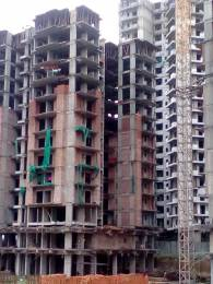 1365 sqft, 3 bhk Apartment in Builder Sports home Noida Extn, Noida at Rs. 51.1875 Lacs