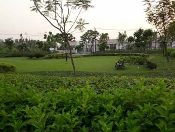 1211 sqft, Plot in Eldeco Shaurya Plots Bijnor, Lucknow at Rs. 27.0000 Lacs
