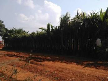 8100 sqft, Plot in Builder Sri Village 2 Shamshabad, Hyderabad at Rs. 72.0000 Lacs