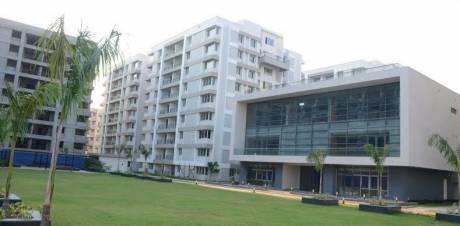 1080 sqft, 2 bhk Apartment in Salarpuria Sattva Silveroak Estate Rajarhat, Kolkata at Rs. 62.0000 Lacs