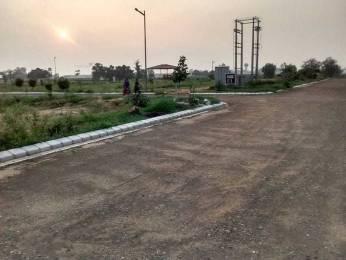 4500 sqft, Plot in Altus Space Builders Pvt Ltd Muirwoods Mullanpur, Mohali at Rs. 92.0000 Lacs