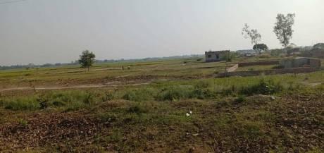 1360 sqft, Plot in Builder Daafi Ashokpuram Daafi Road, Varanasi at Rs. 22.0000 Lacs