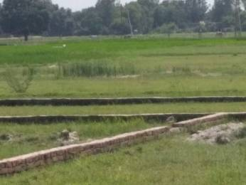 1360 sqft, Plot in Builder Adalhat to Rastogi Talab Ahraura Road, Mirzapur at Rs. 5.0000 Lacs