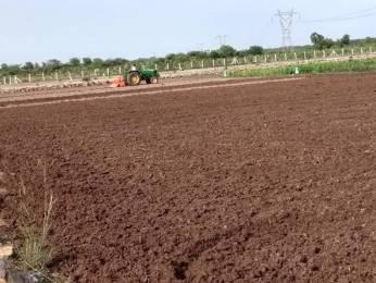 10000 sqft, Plot in Kingmakers Farm Land Chengalpattu, Chennai at Rs. 10.0000 Lacs