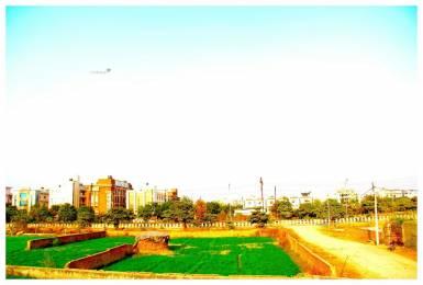 300 sqft, Plot in The Sri Groups Sri Green Avenue Sector-89 Noida, Noida at Rs. 45.0000 Lacs
