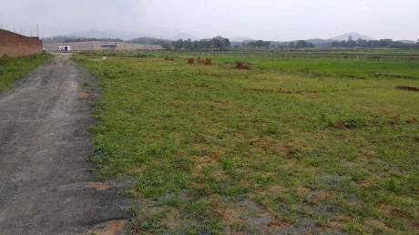 Buy Residential Land in Shukla Colony Ranchi, Shukla Colony Ranchi