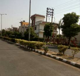 810 sqft, Plot in Builder trumark homes Sector 124 Mohali, Mohali at Rs. 16.5000 Lacs