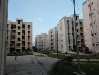 425 sqft, 1 bhk Apartment in DDA Flats Sector 23 Sector 23 Dwarka, Delhi at Rs. 13000