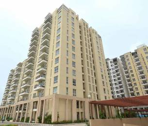 1550 sqft, 3 bhk Apartment in Builder Project Mohali Sec 105, Chandigarh at Rs. 48.0000 Lacs