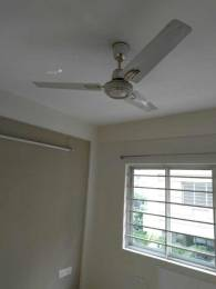 880 sqft, 2 bhk Apartment in Srijan Midlands Madhyamgram, Kolkata at Rs. 8000