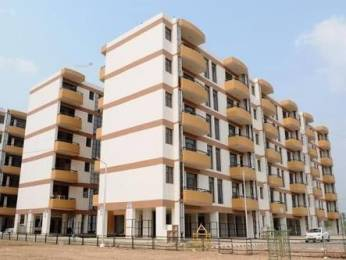 800 sqft, 1 bhk Apartment in Builder Project Sector 63, Chandigarh at Rs. 14000