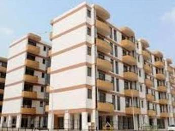 1100 sqft, 2 bhk Apartment in Builder Project Sector 63, Chandigarh at Rs. 23000