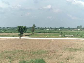 8280 sqft, Plot in Builder Project Yamuna Vihar Road, Ghaziabad at Rs. 23.6000 Lacs