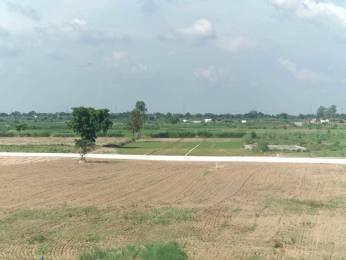 8280 sqft, Plot in Builder Project Yamuna Vihar Road, Ghaziabad at Rs. 23.6000 Lacs