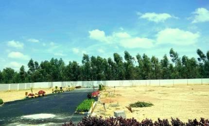 500 sqft, Plot in Builder Project Domsandra Off K R Puram, Bangalore at Rs. 8.0000 Lacs
