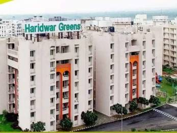 365 sqft, 1 bhk Apartment in Hero Haridwar Greens Apartments Aneki Hetmapur, Haridwar at Rs. 11.1500 Lacs