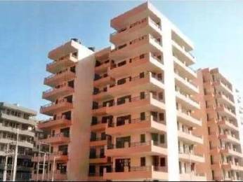 1550 sqft, 3 bhk Apartment in Builder gh 106 Sector 20 Panchkula, Chandigarh at Rs. 85.0000 Lacs