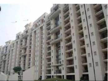 3007 sqft, 4 bhk Apartment in Parsvnath Panorama Swarn Nagri, Greater Noida at Rs. 35000
