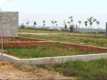 1089 sqft, Plot in Builder Project Pervesh Nagar, Delhi at Rs. 4.2350 Lacs