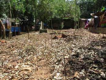 4347 sqft, Plot in Builder Project Oortumbalam Maranalloor Road, Trivandrum at Rs. 19.0000 Lacs